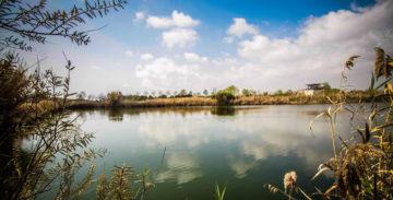 La Comisión Europea exige a Madrid que respete los espacios naturales del Delta.