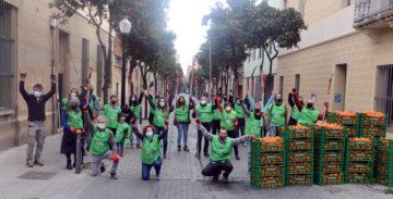 Después de una larga jornada los voluntarios recogieron 800 kilos de naranjas. - Foto: Ajuntament de Barcelona