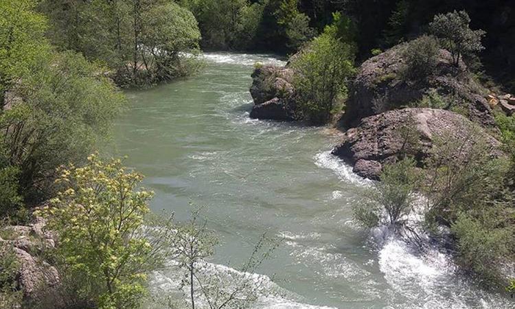 El río Llobregat desde el Pont del Pedret.