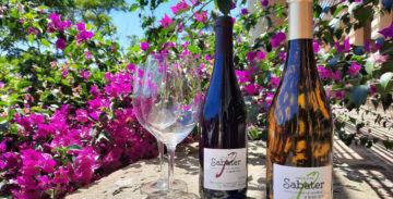 El vino de la Vinya de Can Sabater ya forma parte de la D. O. Alella.